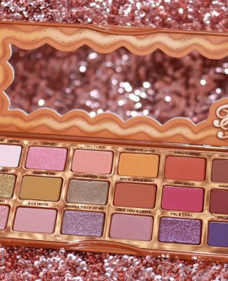 La palette Pumpkin Spice de Too Faced  !